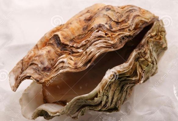 open-oester-op-ijs-6144007-2